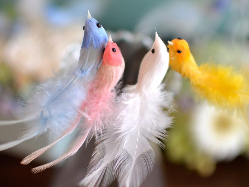 選べる小鳥のカラー